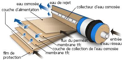 membrane tfc